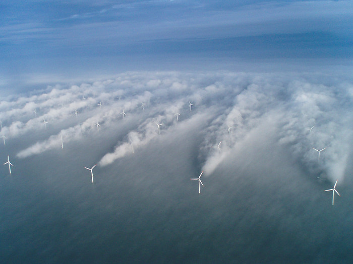 Wind Farm Wakes